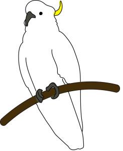 Crowded cockatoo mascot